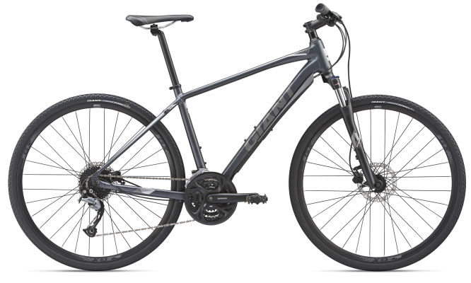 Giant Roam Disc 2 2019